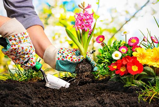 農業・園芸資材事業イメージ